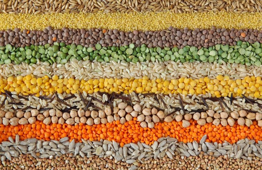 grains-seeds-beans