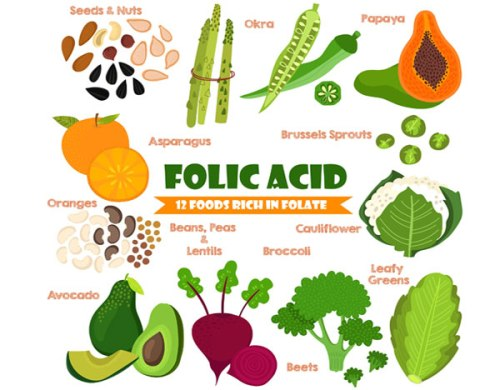 folic-acid